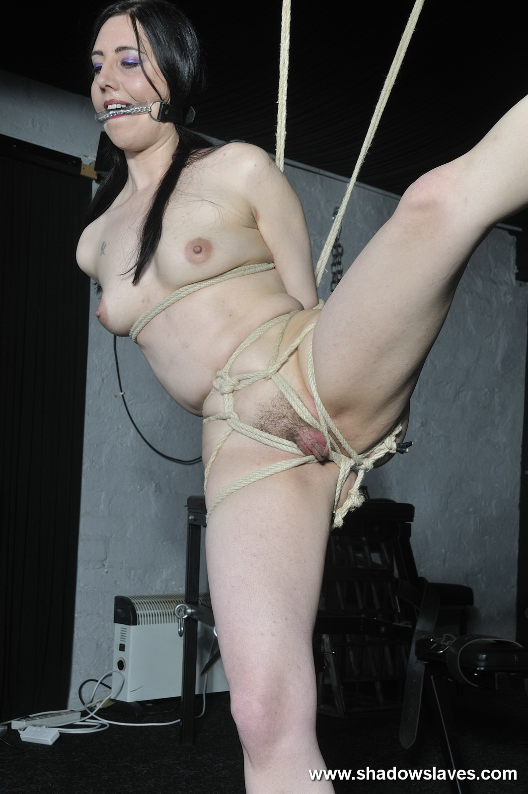 www.shadow slaves.com Visit shadowslaves to see more of our beautiful shadowslaves.