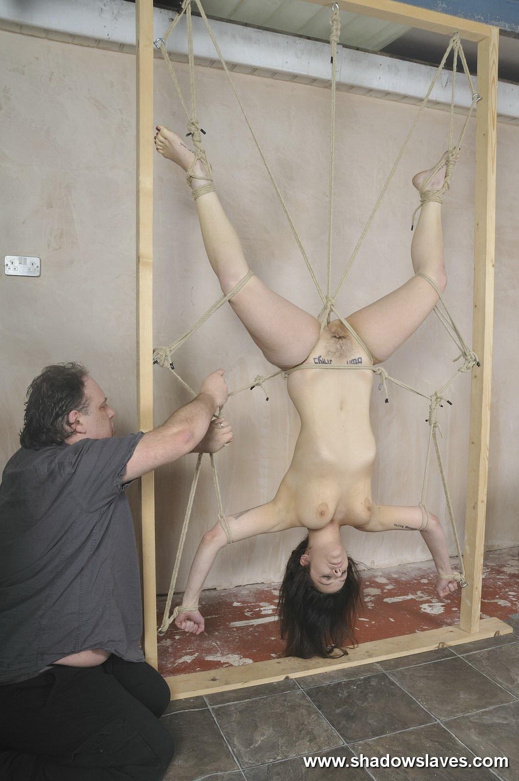 bdsm suspension frame
